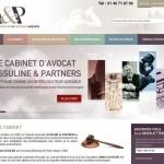 www.avocat-paris-assuline.com.jpeg